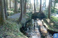 姥が池ロマン公園