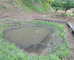 悲しい言い伝えが残る城山公園の「鏡が池」
