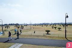 田川ふれあい公園