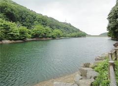 静かに美しい水をたたえる大郷戸ダム