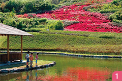 西方総合公園(西方ふれあいパーク)