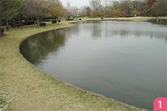 赤塚ふれあい公園