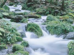 塩谷町のシンボル「尚仁沢湧水」